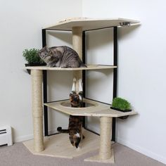 """651 Likes, 52 Comments - Unconventional Cat Furniture (@catastrophicreations) on Instagram: """"We're in the process of testing some new cat trees. These will be the first collection of cat trees…"""" http://www.kittydevil.com/product-category/cats-furniture/activity-trees/ #CatGatos"""