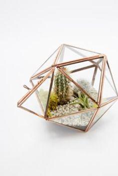 Urban Grow - Terrarium étoile cuivre