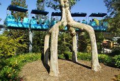 Скульптуры из деревьев Алекса Эрландсона - Путешествуем вместе