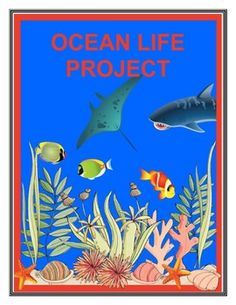 Ocean Life Ecosystem Project Science Worksheets, Science Resources, Science Activities, Science Ideas, Teaching Science, Science Classroom, Montessori Classroom, Classroom Activities, Science Experiments