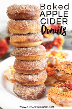 It doesn't have to be fall to enjoy these Baked Apple Cider Donuts. This no yeast baked donut is full of sweet apple cider flavor and topped with a cinnamon-sugar mixture. These easy old-fashioned baked donuts are made with simple ingredients. They are a baked and not friend. These homemade apple cider donuts are soft and moist cake-like doughnuts. Yeast Donuts, Cinnamon Sugar Donuts, Apple Cider Donuts, Doughnuts, Homemade Apple Pie Filling, Homemade Apple Cider, Baked Donut Recipes, Baked Donuts, Donut Maker