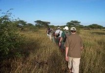 Hiking trails in the Kruger National Park with Kruger National Park - Backpacking Trails. #dirtyboots #hiking #krugerpark #southafrica