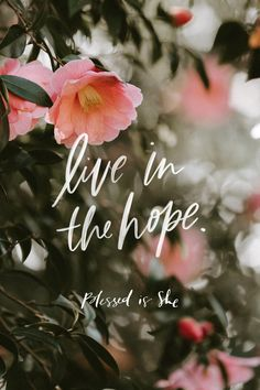 Obeying God and Living in Hope - Blessed Is She Bible Verses Quotes, Bible Scriptures, Faith Quotes, Daily Scripture, Daily Devotional, Wallpapers Gospel, Church Readings, Blessed Is She, Bible Verse Wallpaper
