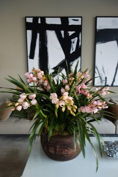 These pink cymbidiums contrast with Kevin Sharkey's black-and-white modern art.