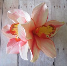 Hawaiian Coral White Two Orchids hair flower clip by olgadesigns Flower Hair Clips, Flowers In Hair, Wedding Flowers, Flowers Perennials, Planting Flowers, Fruit Plants, Hawaiian Flowers, White Orchids, Types Of Flowers