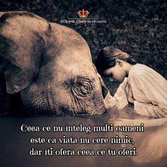 """Our prime purpose in this life is to help others. And if you can't help them, at least don't hurt them. the Dalai Lama (Photography: Gregory Colbert Dalai Lama, Foto Picture, Sweet Picture, Love Quotes, Inspirational Quotes, Elephant Love, Elephant Pics, Elephant Quotes, Elephant Artwork"