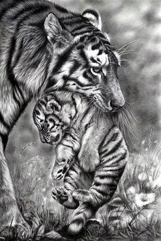 Realistic Animal Pencil Drawings (31)
