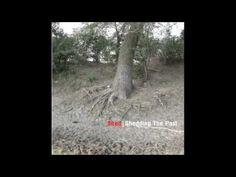 Shed - Estrange from Shedding The Past [Ostgut Ton, 2008]. Techno.