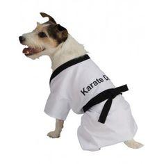 Cinturón negro de cualquier arte marcial es lo que parecerá tu perro con este disfraz de karateka.