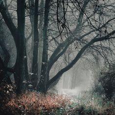 the shelter of the fallen souls XVII by JoannaRzeznikowska on DeviantArt