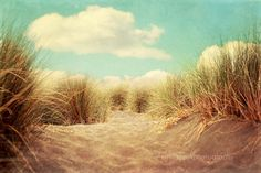 Beach home decor Solitude ocean seashore by VintageChicImages