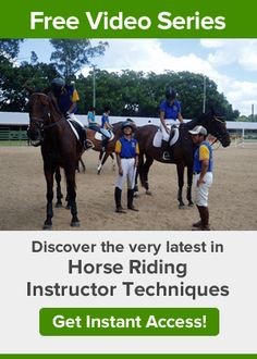 The Reason Why People Have Horse Careers or a Horse Business - Online Horse College