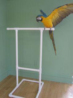 The best Homemade bird toys Parrot Perch, Parrot Bird, Bird Perch, Diy Parrot Toys, Diy Bird Toys, Diy Macaw Toys, Parrot Stand, Bird Stand, Green Wing Macaw