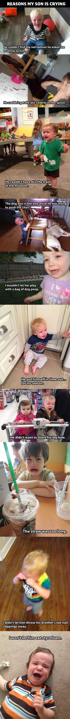 """Reasons My Son Is Crying…pretty sure we've experienced all of these. ~~Haha """"its funny cause its true"""" lol Funny Quotes, Funny Memes, Haha Funny, Funny Stuff, Freaking Hilarious, Super Funny, Dog Stuff, Random Stuff, Lol So True"""