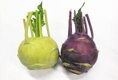 「コールラビ(緑・紫)」 地中海沿岸地方が原産地のアブラナ科の野菜で、キャベツの一種です。 コールラビの語源はドイツ語で、コールは「キャベツ」、ラビは「カブ」を意味します。  風味はキャベツに似ていて、果肉は白色。カブよりもシャキッとした歯触りです。  生のままスライスしてサラダや浅漬けに。また、ポトフなどの煮物や炒め物など、クセがないのでいろんなお料理で食されます。