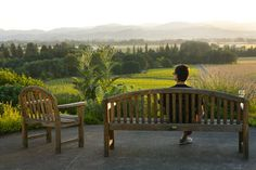 10 Oregon wineries with a view.