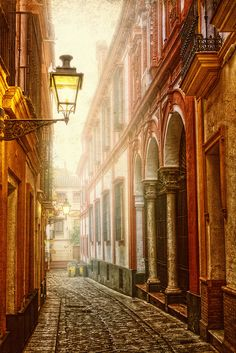 Beautiful alley in Barrio de Santa Cruz, Seville, Spain I loved the way these alleyways looked until the night where they became a nightmare
