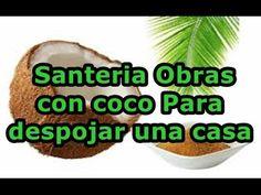 Santeria Obras con coco Para despojar una casa