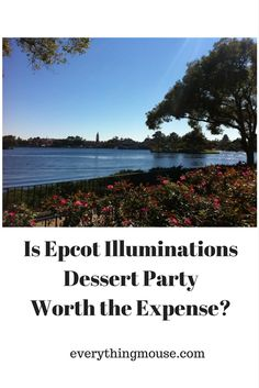 Are you thinking about booking the Disney Epcot Illuminations Sparkling Dessert Party, but are still undecided about whether or not to spring for the cost? At $49 for adults and $29 for children ages 3 to 9 the…
