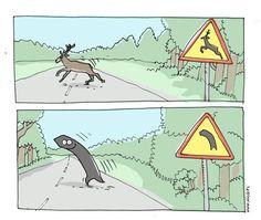 Uwaga na znaki - Joe Monster