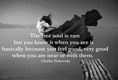 The free soul is rare - Charles Bukowski Quotes Jack Kerouac, Charles Bukowski Quotes, Free Soul, Words Worth, Thats The Way, Word Porn, Great Quotes, Awesome Quotes, Inspiring Quotes