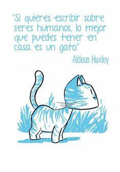 http://www.diaboloediciones.com/citas-de-gatos/                                                                                                                                                                                 Más