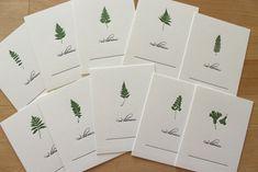 Moontree Letterpress: Barnes Arboretum Ferns