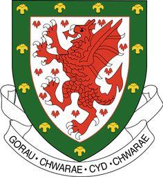 Welsh National Football Team