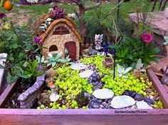 Fairy cottage miniature garden by Shirley Bovshow with stone house, succulent room and mini garden decor Mini Fairy Garden, Fairy Garden Houses, Gnome Garden, Fairy Gardening, Garden Projects, Diy Projects, Garden Ideas, Fairy Garden Supplies, Garden Pictures