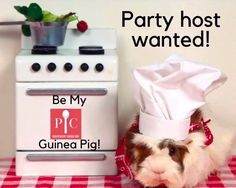 Explore Pampered Chef to find top kitchen products, recipes, and party ideas you'll love, plus details on how to share the love as a Pampered Chef consultant. Pampered Chef Party, Host A Party, Quick Meals, Sofa, Cleaning, Facebook, Fun, House, Fast Meals
