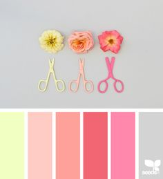 color palette image via: Colour Pallette, Colour Schemes, Color Trends, Color Patterns, Color Combos, Pantone, Design Seeds, Palette Design, Color Balance