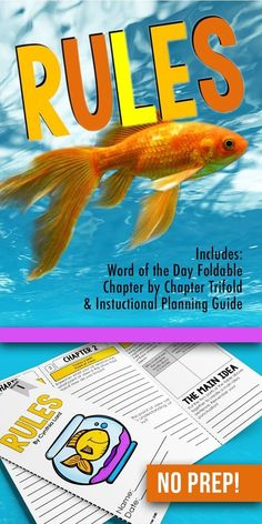Rules novel study ac