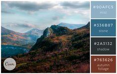 Subdued & Professional - Color makes a design come alive.