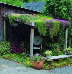 patio garden design roof greening garden house