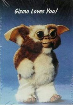 gizmo - gremlins, my first movie in a theater. School Memories, My Childhood Memories, 90s Childhood, Funny Quotes For Kids, Funny Kids, Fun Funny, Gremlins Gizmo, Nostalgia, Frederique