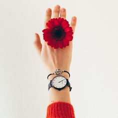 The freedom to mix and match with any color. Meet the Julie Julsen Pure Black. Red Jumper, Tropical Vibes, Spring Looks, Heart Bracelet, Wood Watch, Daniel Wellington, Pure Products, Freedom, Meet