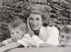 Diana, Harry and William - how she wanted her life to be.