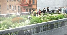 Welcome to the official site of the High Line and Friends of the High Line.