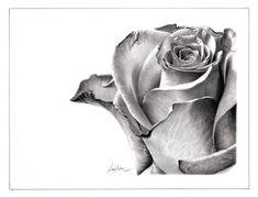 Linda Huber - Graphite Pencil Artist