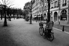 A forgotten bike leans against a tree in the Place Dauphine on the Île de la Cité in Paris