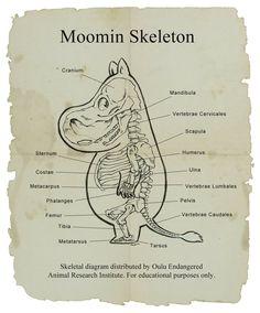 Moomin Skeleton #tovejansson