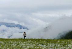 That feeling of freedom �� #산 #산스타그램 #숲 #눈 #눈스타그램 #사진 #사진스타그램 #사진작가 #경치 #일상 #블랙앤화이트 #맞팔 #파나소닉 #포토그래퍼 #여행 #여행스타그램 #mountains #mountain #blackandwhite #fog #mountainfog #snow #photo #photography #photographer #instaphoto #instatravel #instadaily #daily #panasonic http://tipsrazzi.com/ipost/1518210331401738972/?code=BURxECph1rc
