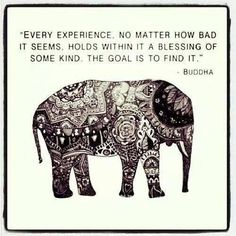 """Every experience, no matter how bad it seems, holds within it a blessing of some kind. The goal is to find it""- Buddha"