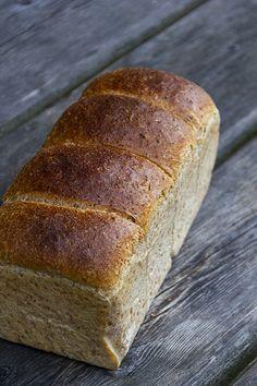 Buttertoast mit 50% Vollkornanteil - Plötzblog - Selbst gutes Brot backen Banana Bread, Delish, Baking, Desserts, Breads, Food, Baguette, Pizza, Low Carb