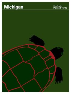 The painted turtle is the most widespread native turtle of North America, and the official state reptile of Michigan.