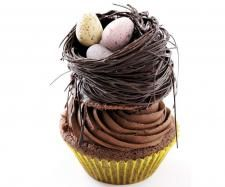 Recipe Chocolate Cupcakes decorated with a chocolate nest and Easter eggs by Thermomix in Australia - Recipe of category Baking - sweet