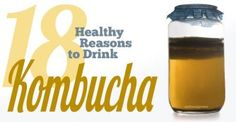 Kombucha is the rage among health food lovers. Here are 18 reasons why you should consider drinking this probiotic tea, and why its been around for thousands of years.