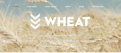 Wonderfull Website with vertical scrolling