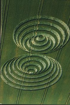Crop circles ----Looks like we are being taught the basics of sound vibrational movement , the unseen force.