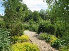 Somerset-garden-2960-copyright-charlotte-rowe-low-res 20515800875 O